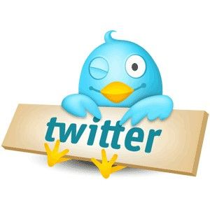 twitter, plugins, wordpress