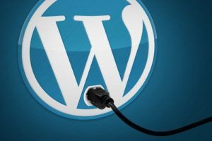 wordpress, codigo