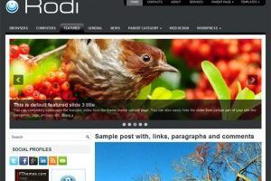 template, tema , wordpress, wp, 2 colunas