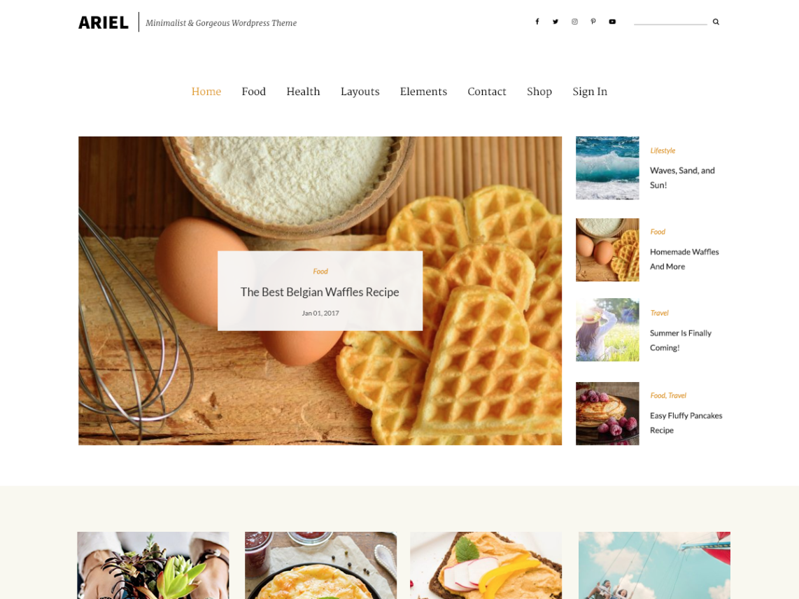 ariel template wordpress